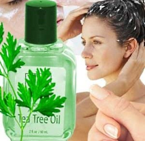 tea tree oil 2